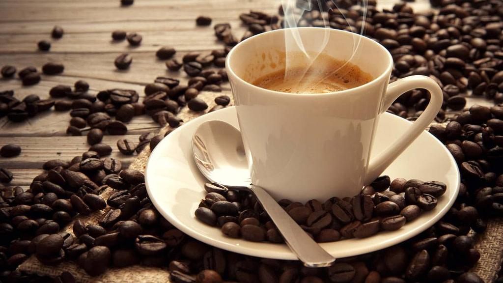 café todo lo que debes saber