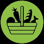 servicio de nutrición para adquirir buenos hábitos nutricionales. Educación nutricional en Valencia